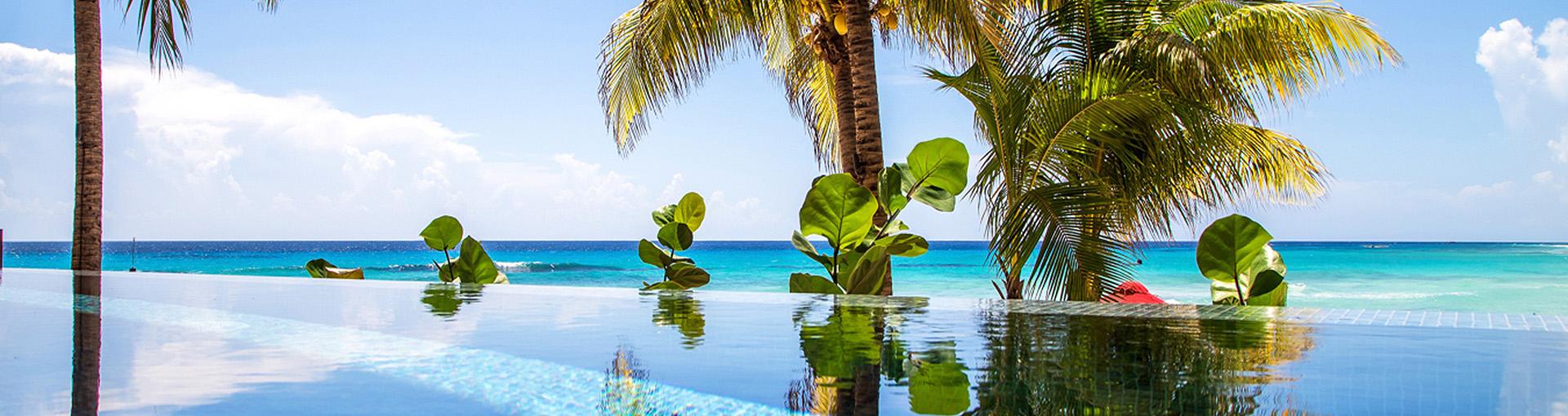 Terra Property Management Barbados